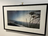 Framed Expansive Photo of the New Zealand West Coast