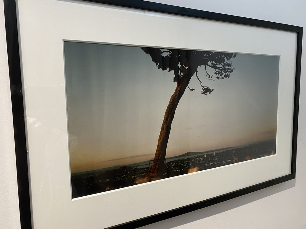 Panoramic Framed Photo of Rangitoto Island from One Tree Hill