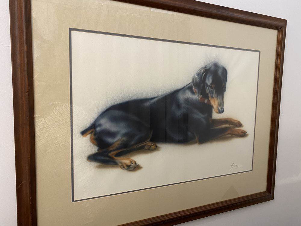 Doberman Watercolour by Natalie O'Callaghan